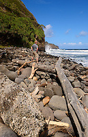 Beach at Waipi'o Valley, Big Island Hawaii. Image taken with Nikon D2xs and 12-24 mm f/4 (ISO 100, 17 mm, f/11, 1/200 sec). Raw image converted with Capture NX2, Picture Control = Landscape.