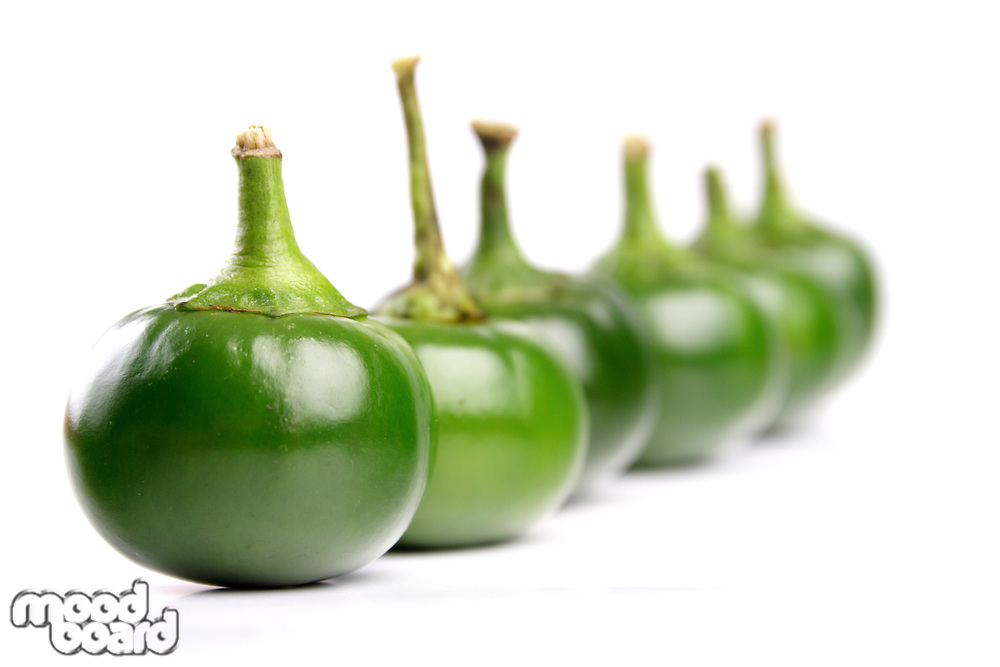 Studio shot of chilli peppers