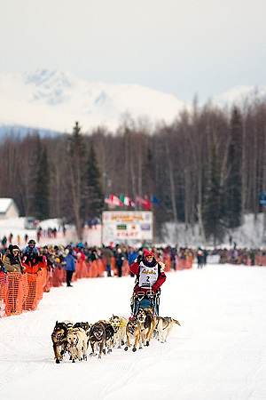 05 March 2006: Willow, Alaska - Leading the teams out of Willow is Lori Townsend, wearing bib number 2 during the restart of the 2006 Iditarod on Willow Lake in Willow, Alaska