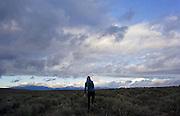 Running through sagebrush, Taos county