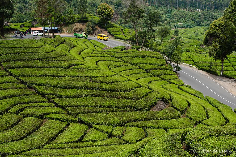 Malabar thee plantages op West Java in het Parahyangan gebied. De Parahyangan, ook wel de Preanger genoemd in voormalig Nederlands Indie, is een berggebied ten westen van de stad Bandung. Het gebied staat bekend om haar uitgestrekte theeplantages in het glooiende landschap. &nbsp;Het is een erfenis uit het koloniale verleden. Van oorsprong is de Parahyangan een Sundanees gebied van het Koninkrijk Soenda.<br /> <br /> In het vroegere Nederlands-Indie stond de Preanger bekend om het&nbsp;Preanger Stelsel. Een inkomens-systeem uit de 18e eeuw waarmee een quota voor koffie en theeproductie werd vastgesteld voor een bepaald gebied. Van lokale regenten werd geeist een bepaalde hoeveelheid koffie te leveren aan de Verenigde Oostindische Compagnie (VOC), zonder verdere andere belastingen. Regenten waren vrij om rijst en arbeidsdiensten te vragen van de bevolking. Het bracht Nederland grote winsten maar het werkte ook uitbuiting van de bevolking in de hand, zoals beschreven in het boek Max Havelaar van Multatuli.&nbsp;Een ander literair werk met betrekking tot de Preanger is het boek De Heren van de thee van Hella Haase, over een Nederlandse koloniale familie in de thee.&nbsp;<br /> Het Preanger Stelsel werd na 1830 als standaard ingevoerd onder het Cultuurstelsel.<br /> <br /> Van oorsprong is de Prenger een berggebied van de Sundanese bevolking. Het leven werd gevormd en be&iuml;nvloed door het&nbsp;Indiase hindoe-boeddhistische geloof. Hindoe-boeddhistische tradities en cultuur speelden een belangrijke rol in het leven van de Sundanese bevolking, naast het verbouwen van rijst.<br /> <br /> De Parahyangan behoorde deels toe aan het voormalige Koninkrijk Soenda. Na de val van het Sundanese Koninkrijk in de 16e eeuw leefde de bevolking onder Islamitische invloeden, bestuurt door aristocraten.&nbsp;Sinds het begin van de 18e eeuw kwam Parahyangan onder Nederlands bestuur, waarmee de thee -en koffiebouw werd ge&iuml;ntroduceerd.