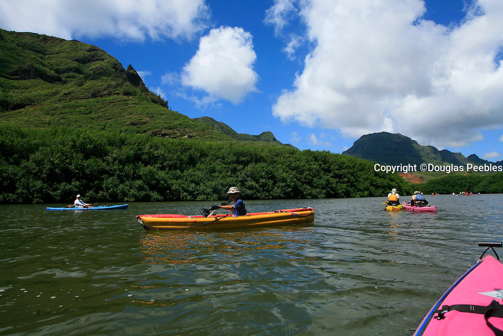 Kayaking, Huleia Stream, Nawiliwili, Kauai, Hawaii