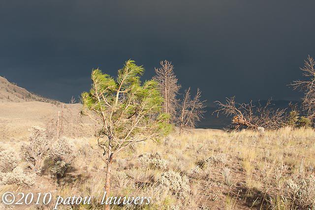 Storm in the Kamloops hillside