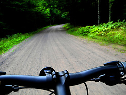 Bike ride through the Chequamegon National Forest.