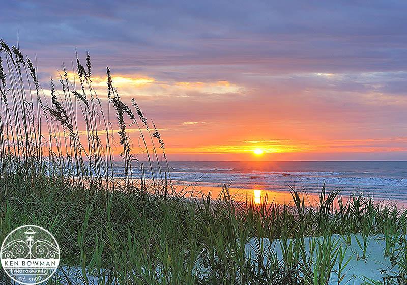 Isle of Palms sea oats sunrise