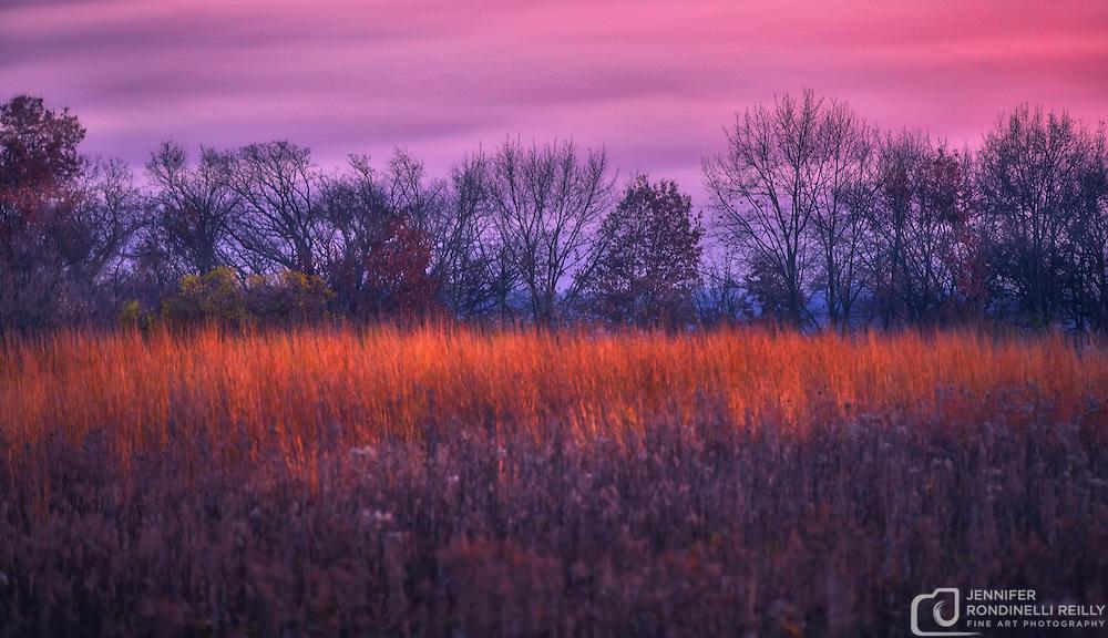 November sunset and prairie at Retzer Nature Center in Waukesha,WI.