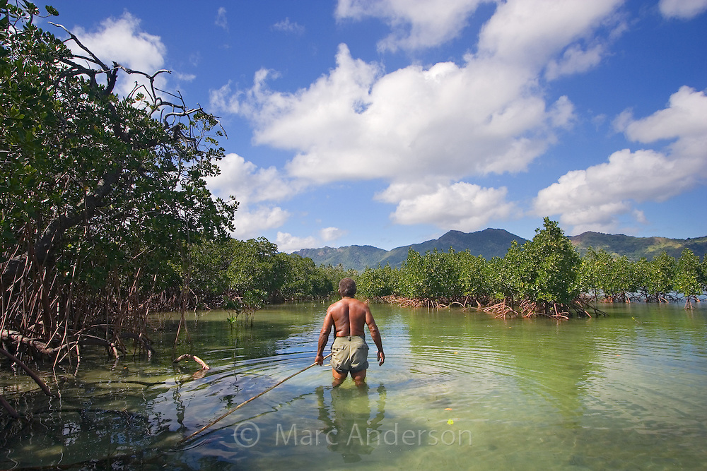 An indigenous Fijian man hunting for fish with a spear on a beautiful tropical island in Fiji.