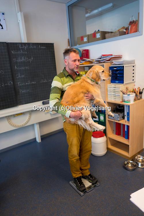 Saint-Cergue, décembre 2017. reportage dans une école spécialisée à St-Cergue, dans laquelle un chien scolaire est utilisé depuis le début de l'année pour venir en aide et calmer les élèves. C'est le premier chien à être utilisé de la sorte en Suisse romande. Le professeur Stephan Läng pèse Tahiti. © Olivier Vogelsang