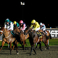 Discussiontofollow and Shane Kelly winning the 7.00 race