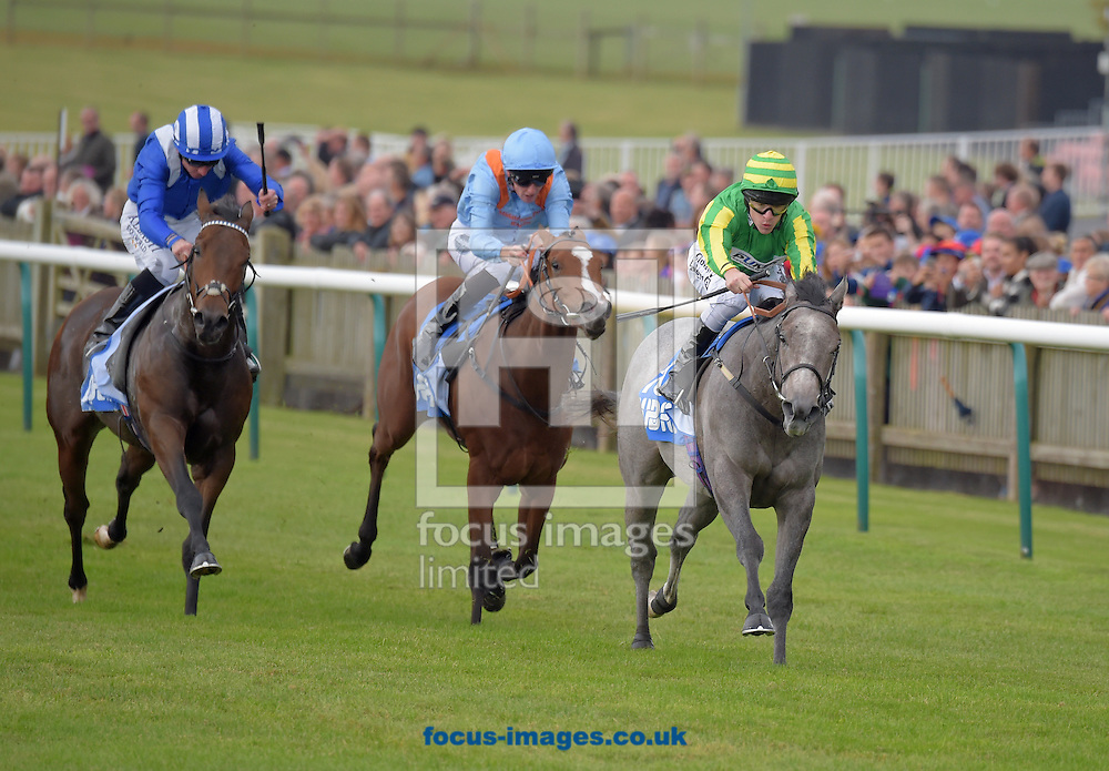 Mrs Danvers ridden by Richard Kingscote (green with yellow striped sleeves) wins Newmarket Academy Goldophin Beacon Project Cornwallis Stakes on the Friday of the Dubai Future Champions Festival on the Rowley Mile Course at Newmarket, Suffolk<br /> Picture by Martin Lynch/Focus Images Ltd 07501333150<br /> 07/10/2016