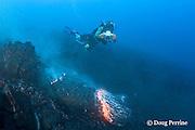"videographer Shane Turpin films pillow lava erupting underwater at Kilauea Volcano, Hawaii Island ("" the Big Island ""), Hawaii, U.S.A. ( Central Pacific Ocean ) MR 382"