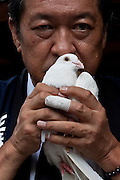 Kunio Hatoyama, a politician with the Liberal Democratic Party, hold a dove before releasing it as a prayer for peace at Yasukuni Shrine. On August 15th every year people gather at Yasukuni Shrine to commemorate the end of the Pacific War. Notionally a call for remembrance and continued peace it is also a Mecca for right wing nationalist including  the paramilitary Uyoku Dantai. Tokyo, Japan, August 15th 2009