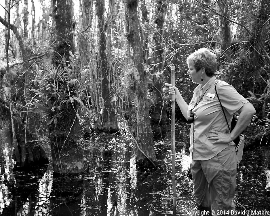 Time to get your feet wet. Swamp walk with Kristen and Angela in the Everglades behind Clyde Butcher's Big Cypress Gallery. Image taken with a Leica X2 camera (ISO 100, 24 mm, f/3.5, 1/80 sec).