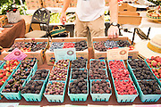 Scheeden Farm's mix of berries for sale: Kiowa, Triple Crown, Boysen, Raspberry, Navajo, Gooseberry
