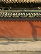 wall with shadow of tree and roof lined with traditional tiles in Beijing China