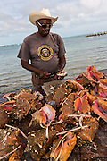 Cracking conch at the fresh fish market Montagu beach Nassau, Bahamas.