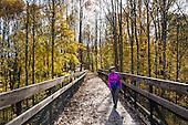 PA: Ohiopyle State Park