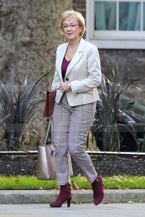 © Licensed to London News Pictures. 22/10/2019. London, UK. Secretary of State for Business Energy and Industrial Strategy ANDREA LEADSOM arrives in Downing Street to attend the weekly cabinet meeting. Photo credit: Dinendra Haria/LNP
