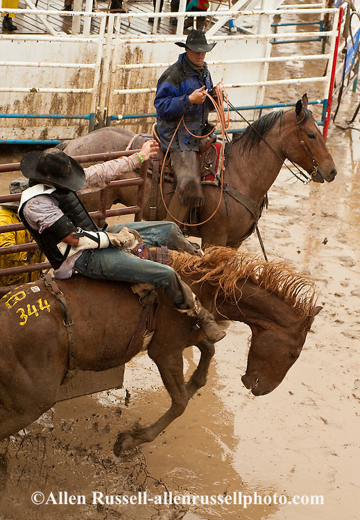 Bareback rider Spencer Brown, Miles City Bucking Horse Sale, Pickup man Jay Shaw, Montana, MODEL RELEASED