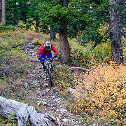 Harlan Hottenstein descends the Lithium single track off of Teton Pass near Wilson, Wyoming.