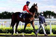 Royal Appointment ridden by Luke Morris and trained by Robert Cowell - Mandatory by-line: Dougie Allward/JMP - 10/07/2020 - HORSE RACING - Bath Racecourse - Bath, England - Bath Races