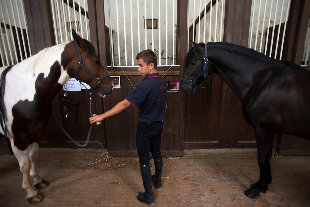 Un stagiaire travail avec les chevaux au Haras National du Pin.<br /> Pin au Haras, France. 25/07/2013.