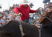 Rodeo: The Rough Stock