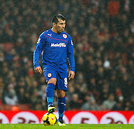 Picture by Mike  Griffiths/Focus Images Ltd +44 7766 223933<br /> 01/01/2014<br /> Gary Medel of Cardiff City during the Barclays Premier League match at the Emirates Stadium, London.