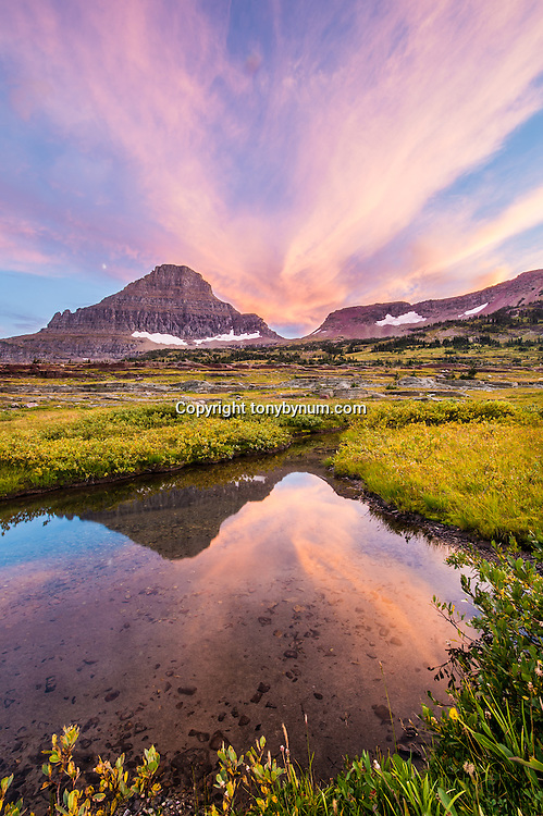 reynolds mountain reflection in warm evening light, glacier national park