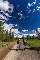 Two fly fisherman walk along the old dirt road back to the car near the Madison River in Montana.