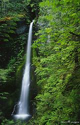 United States, Washington, Olympic National Park, Marymere Falls