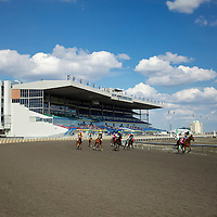 Thoroughbred Racing 2011 - Gallery 01