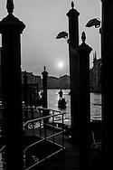 Italy. Venice. , the Grand Canal , Gondolas  Venice - Italy  / Le grand canal, Gondoles  Venise - It