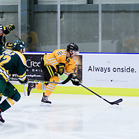 4th year defence man Austin Bourhis (8) of the Regina Cougars in action during the Men's Hockey Home Game on November 5 at Co-operators arena. Credit: Arthur Ward/Arthur Images