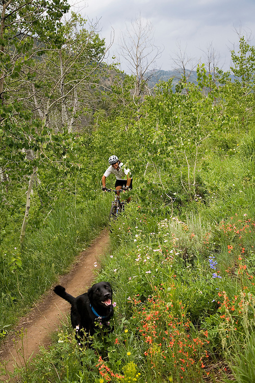 "Nick and black labrador ""Blue"" mountain bike the Adams Gulch Trail in Sun Valley Idaho. MR"