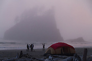 A Sea Stack looms out from the mist at Second Beach near La Push