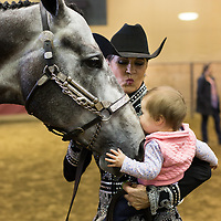 Lauren Wood | Buy at photos.djournal.com<br /> Katherine Haynes of Oxford holds her granddaughter Mary Conlee Mize, 8 months, as she gives Hayne's horse Crosby a kiss in the arena on Friday, March 10 during the annual MSU Bulldog Classic AQHA Horse Show at the MS Horse Park in Starkville.