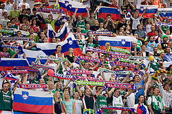 Slovenian fans during the EuroBasket 2009 3rd place match between Slovenia and Greece, on September 20, 2009, in Arena Spodek, Katowice, Poland.   (Photo by Vid Ponikvar / Sportida)