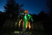 New York Botanical Gardens on October 28, 2016 in the Bronx, New York. (Photos by Ben Hider/Ben Hider Weddings)