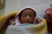 13 July 2011, Teyateyaneng, Berea District, Lesotho. These babies were all born during the course of the night or previous day (12 July 2011).