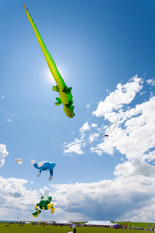 Aligator and frog kites of Bernhard Dingwerth from Kassel, Germany. Windscape Kite Festival, Swift Current, Saskatchewan.