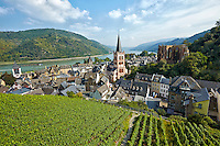 Romantic Rhine view of St. Peter's Protestant Church, Werner Chapel Ruins, Rhine River, vineyards, and rolling hills, Bacharach, Germany.