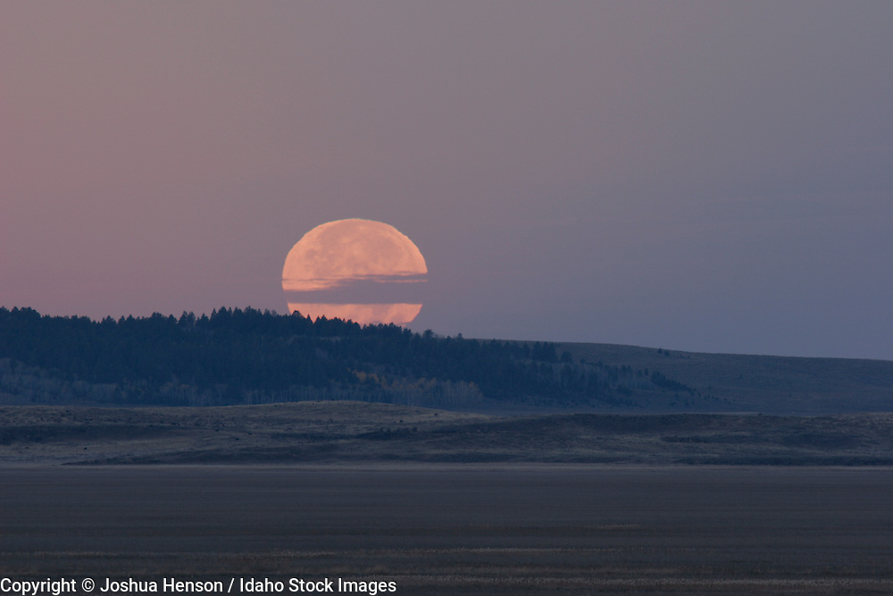Idaho. The moon sets at dawn at Grays Lake National Wildlife Refuge in autumn.