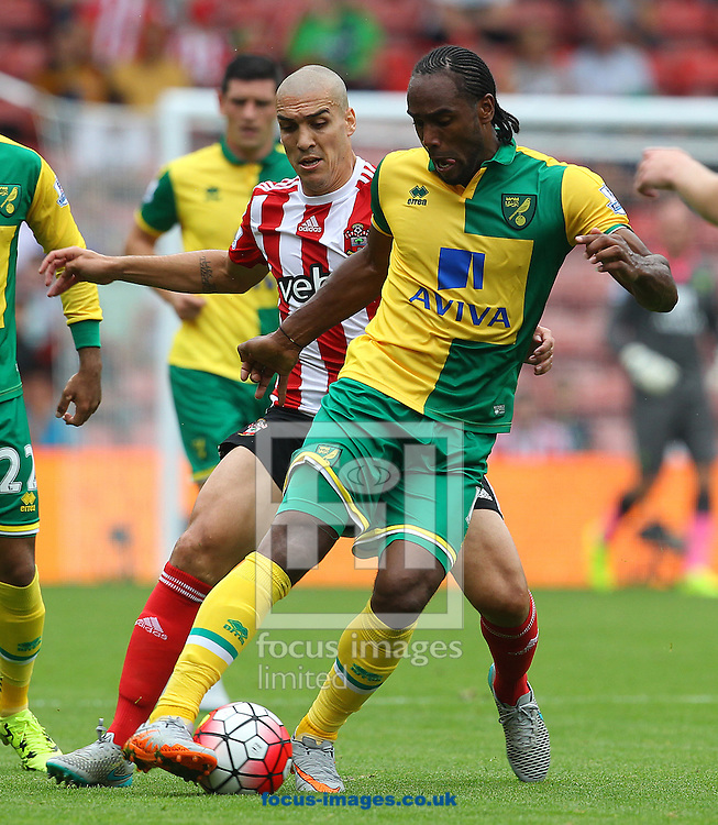 Cameron Jerome of Norwich and Oriol Romeu of Southampton in action during the Barclays Premier League match at the St Mary's Stadium, Southampton<br /> Picture by Paul Chesterton/Focus Images Ltd +44 7904 640267<br /> 30/08/2015