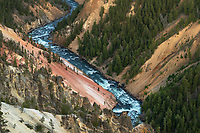 Yellowstone River cutting through colorful rhyolite cliffs, Grand Canyon of the Yellowstone, Yellowstone National Park