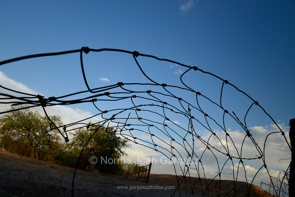 Barbed wire on an abandoned farm.