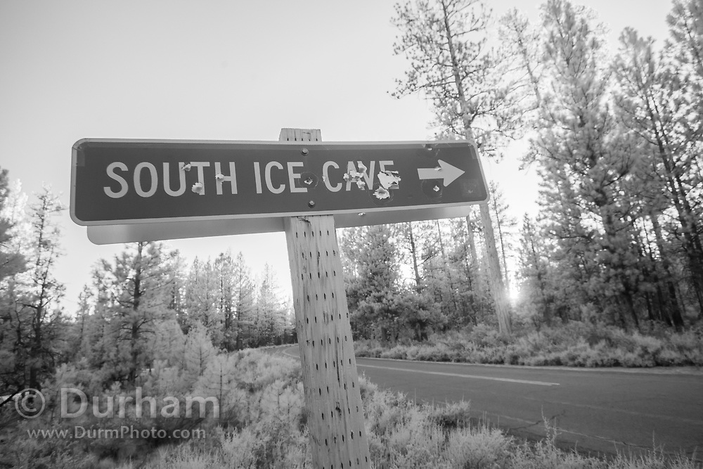 Shot up roadside signs in Central Oregon in Deschutes National Forest, Oregon.
