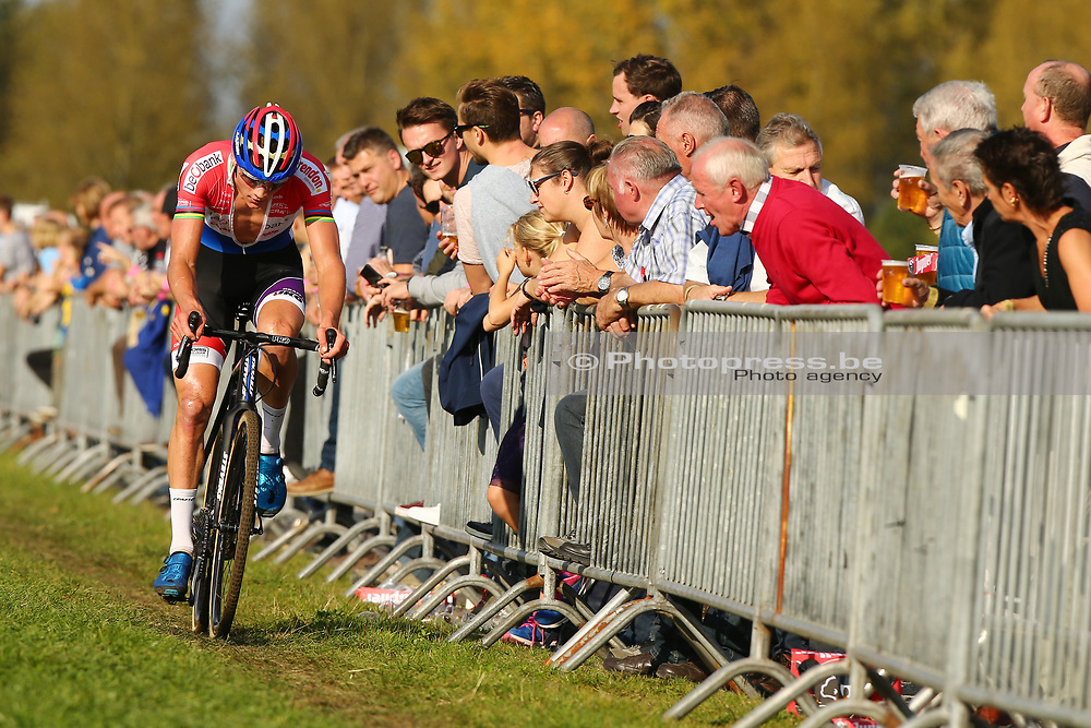 BELGIUM / KRUIBEKE / CYCLING / CYCLOCROSS / VELDRIJDEN / VELDRIT / BRICO CROSS #3 / POLDERSCROSS / MEN ELITE / MATHIEU VAN DER POEL (NED - BEOBANK - CORENDON) /