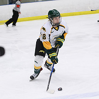 1st year forward Jordan Kulbida (18) of the Regina Cougars in action during the Women's Hockey home game on February 9 at Co-operators arena. Credit: Arthur Ward/Arthur Images