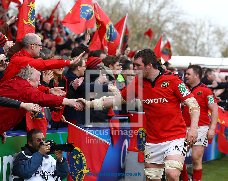 Picture by Paul Terry/Focus Images Ltd +44 7545 642257.07/04/2013.Peter O'Mahoney of Munster celebrates with fans after their teams win during the Heineken Cup match at Twickenham Stoop , London.